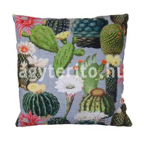 Kaktuszos díszpárna